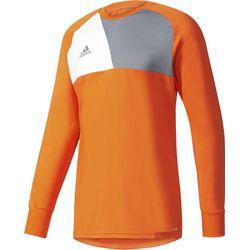 Adidas Assita 17 Keepershirt Lange Mouw Heren - Oranje