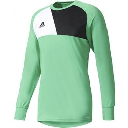 Adidas Assita 17 Keepershirt Lange Mouw Heren - Groen