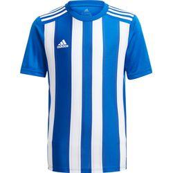Adidas Striped 21 Shirt Korte Mouw Kinderen - Royal / Wit