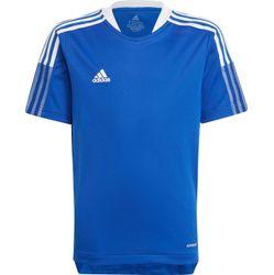 Adidas Tiro 21 T-Shirt Kinderen - Royal