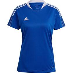 Adidas Tiro 21 T-Shirt Femmes - Royal