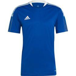 Adidas Tiro 21 T-Shirt Hommes - Royal