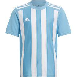 Adidas Striped 21 Shirt Korte Mouw Kinderen - Hemelsblauw / Wit