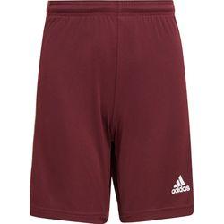 Adidas Squadra 21 Short Kinderen - Bordeaux / Wit