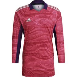 Adidas Condivo 21 Keepershirt Lange Mouw Heren - Roze