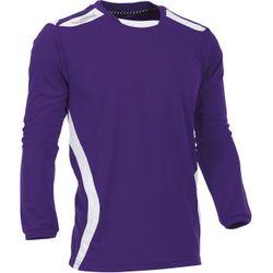 Voorvertoning: Hummel Club Voetbalshirt Lange Mouw Heren - Paars / Wit