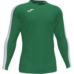 Joma Academy III Voetbalshirt Lange Mouw Heren - Groen / Wit