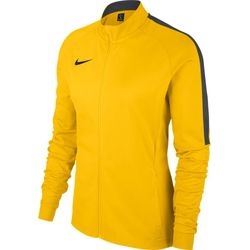 Nike Academy 18 Trainingsvest Dames - Geel / Antraciet