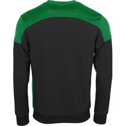 Voorvertoning: Stanno Pride Sweater - Zwart / Groen