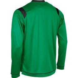 Voorvertoning: Stanno Arezzo Voetbalshirt Lange Mouw - Groen / Zwart