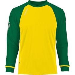 Voorvertoning: Stanno Liga Voetbalshirt Lange Mouw - Geel / Groen